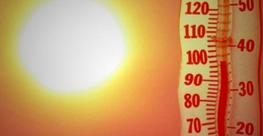 Aşırı sıcaklar Almanya'yı kavuruyor