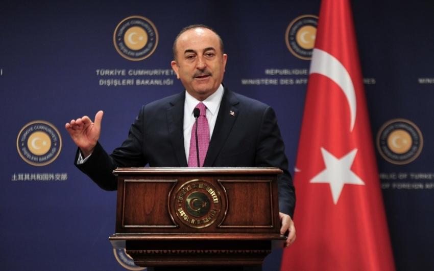Dışişleri Bakanı Çavuşoğlu'na Japonya devlet nişanı tevdi edildi