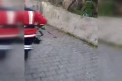 İtfaiyeden zehirli yılan operasyonu