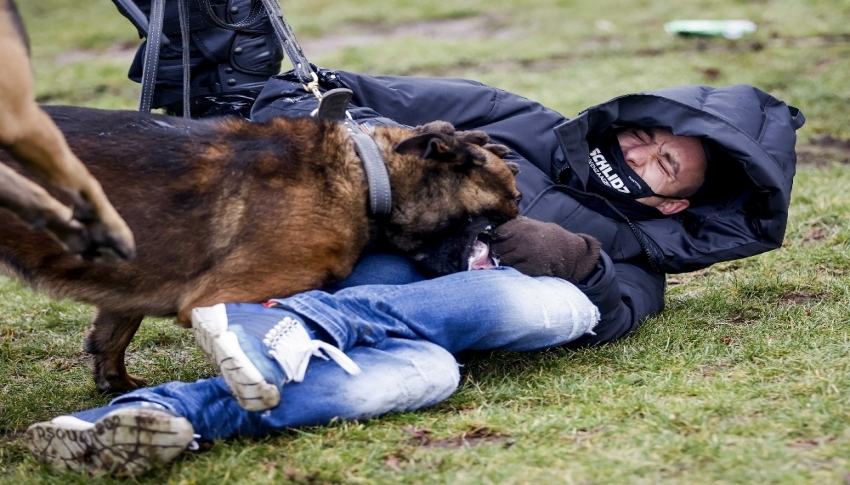 Hollanda polisinden protestoculara köpekli müdahale