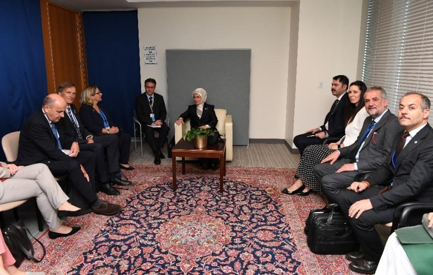 Cumhurbaşkanı Erdoğan, Alman Çevre Bakanı Schulze ile görüştü