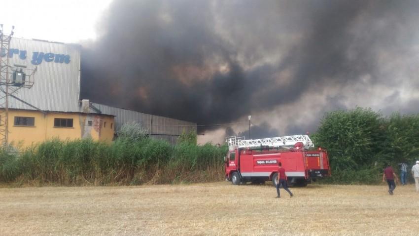 Palet yakıtı üreten fabrikada yangın