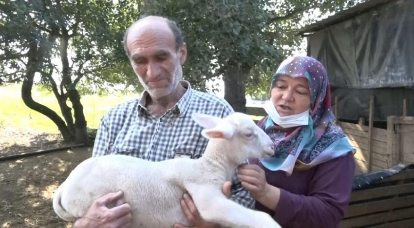 Bursa'da tek tek ölüyorlar