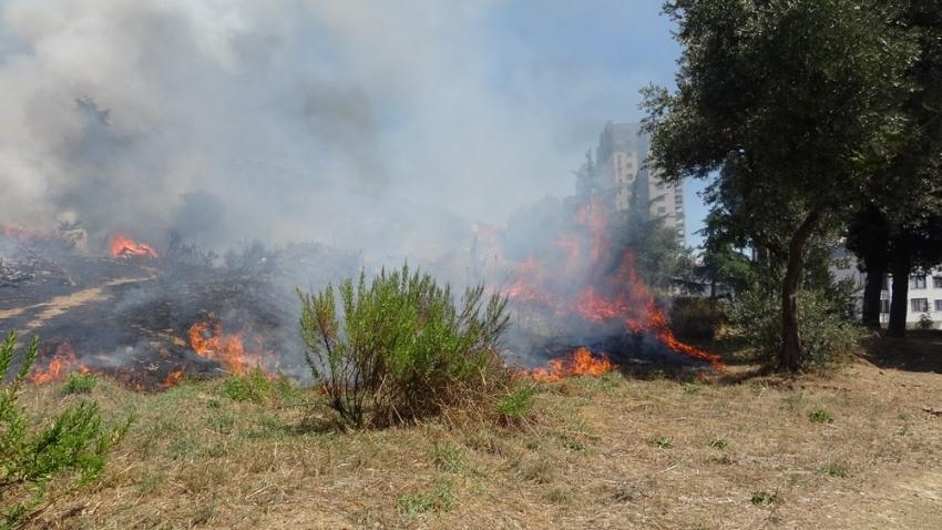 Kartal'da otluk alanda çıkan yangın otoparka sıçramadan söndürüldü