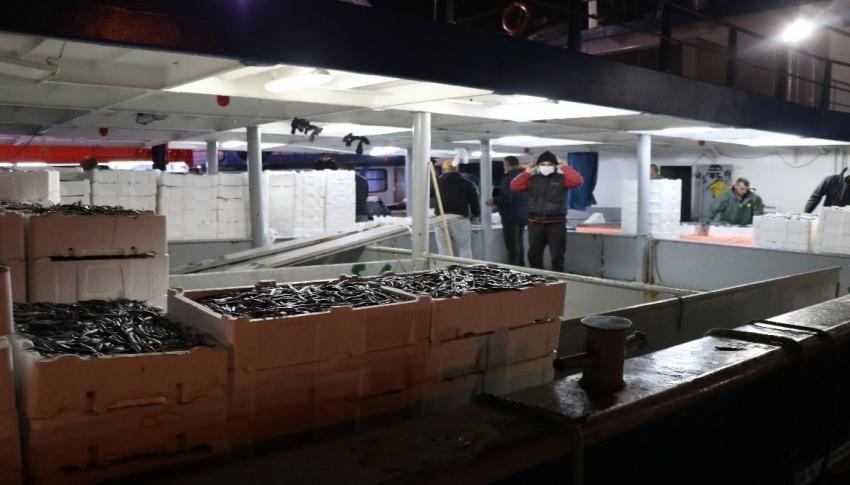 Balıkçılar 10 ton hamsi ile limana yanaştı