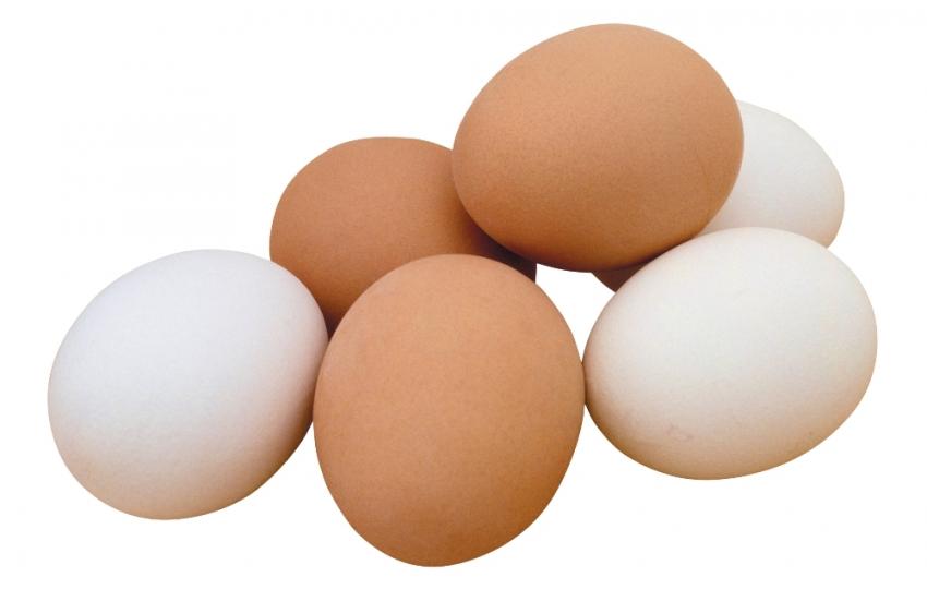 Kasım ayında 1,7 milyar yumurta üretildi