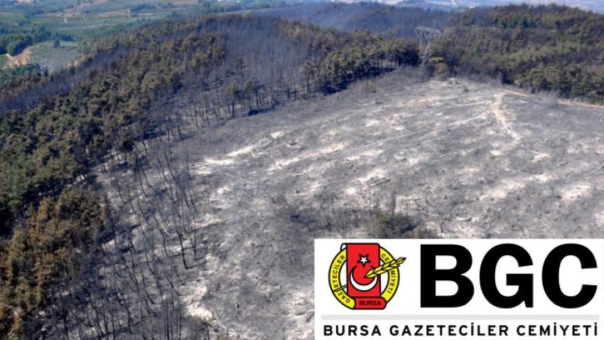 #BursaİçinBirFidanDik kampanyasına BGC desteği