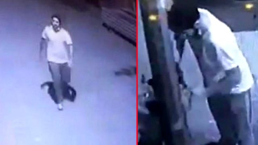Bursa'da hırsızlara karşı aldığı köpek çalındı