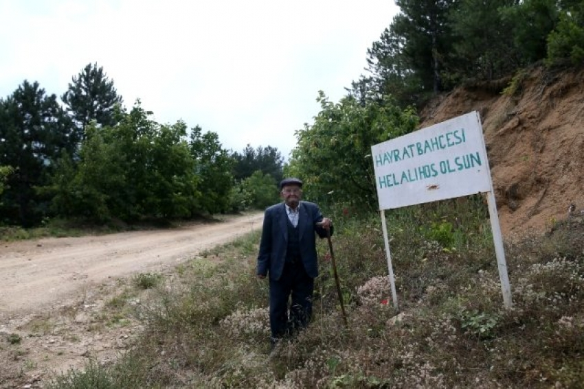 Bursa'da ücretsiz meyve ve sebze