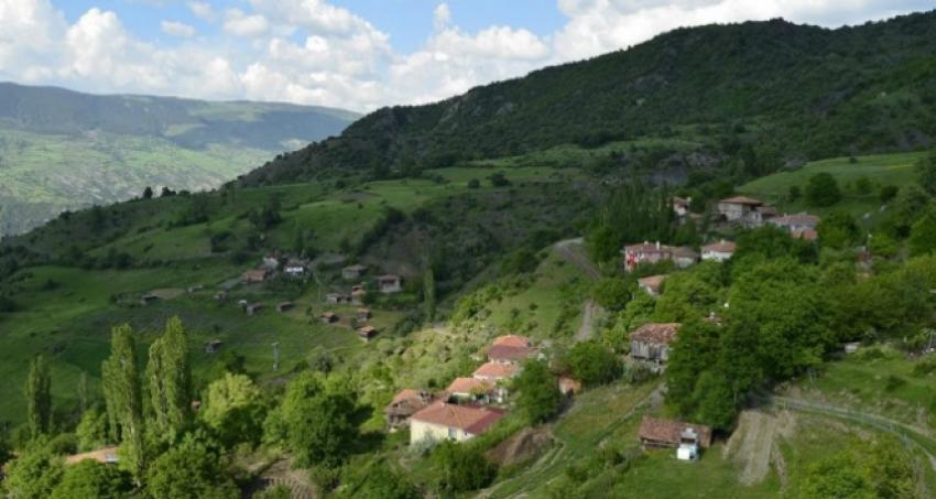 Bu köy 15 gündür elektriksiz