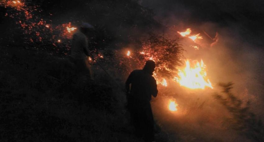 Batman'daki orman yangını kontrol altına alındı