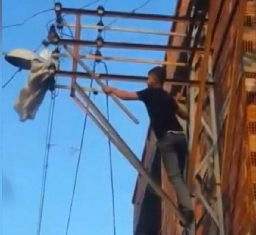 Güvercini kurtarmak için canını hiçe saydı