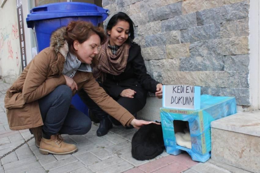 İki esnafın kedi tartışması BİMER'e taşındı