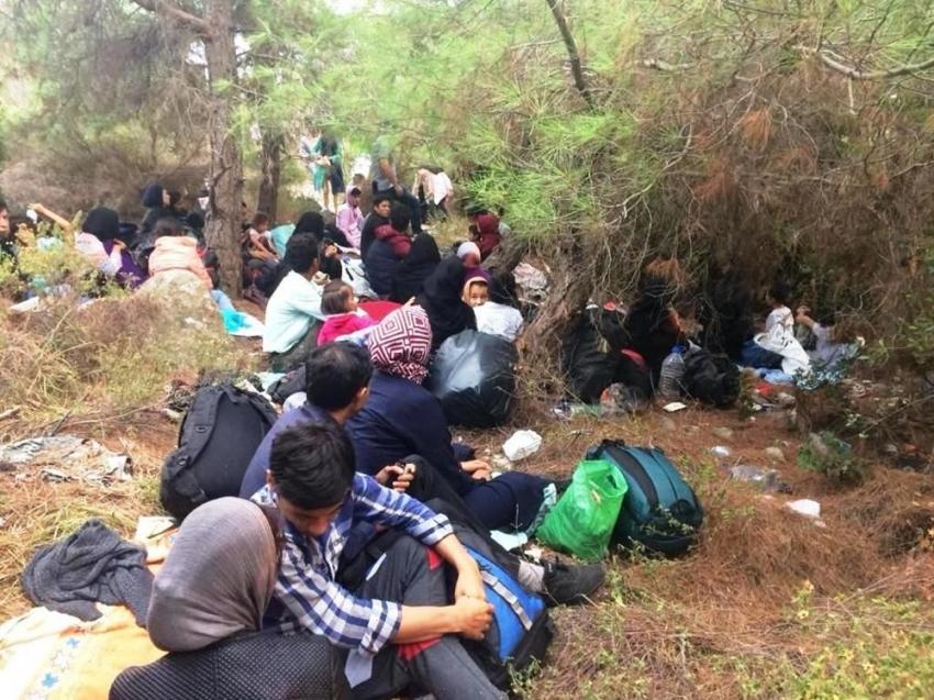 Ayvalık'ta 48 göçmen ve 3 organizatör yakalandı