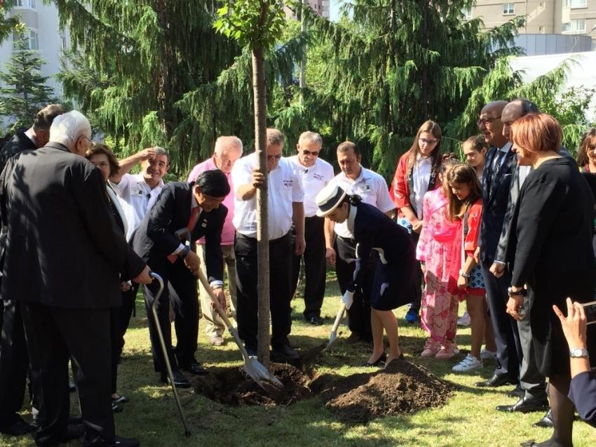 Japonya Prensesi Ankara'da ağaç dikti