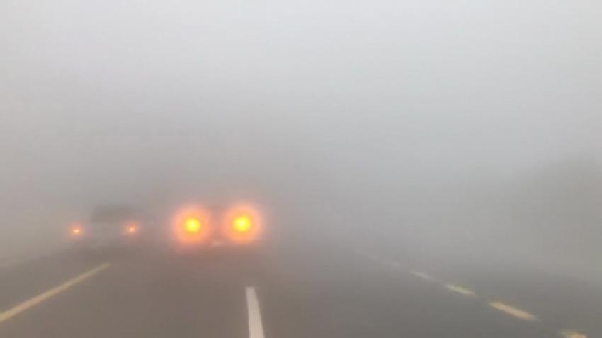 Suudi Arabistan yoğun sise teslim oldu