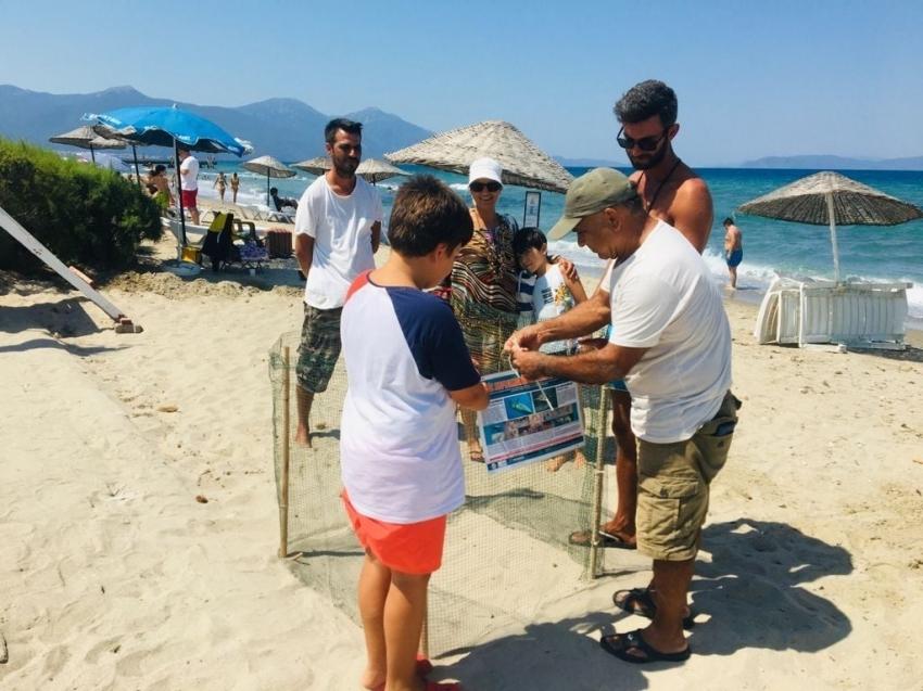 Kuşadası sahillerine Caretta Carettalar yuva yaptı