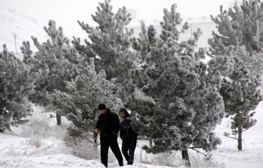 Doğu Anadolu'da soğuk hava: Göle - 14