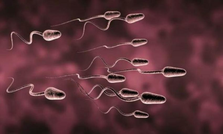 Cep telefonundan sperm testi!