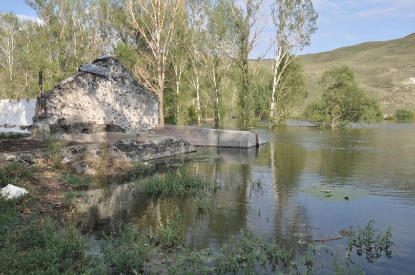 Baraj Gölü yaban hayatına ev sahipliği yapıyor