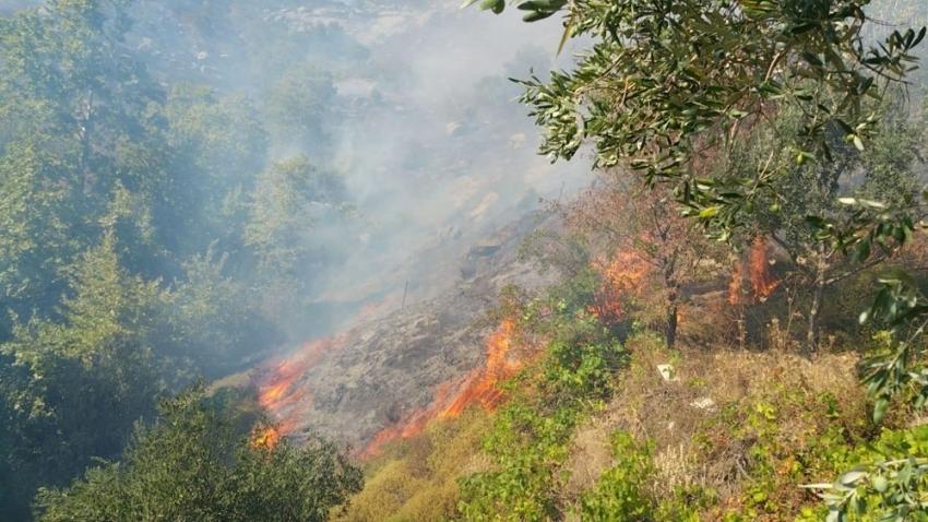 80 hektarlık alanı küle çevirdiği iddia edilen şüpheli gözaltında