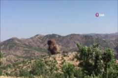 Diyarbakır'da uzaktan kumandalı patlayıcı ele geçirildi