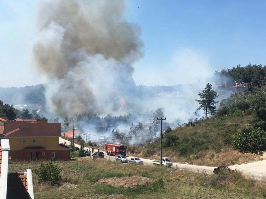 Bursa Mudanya'da yangın