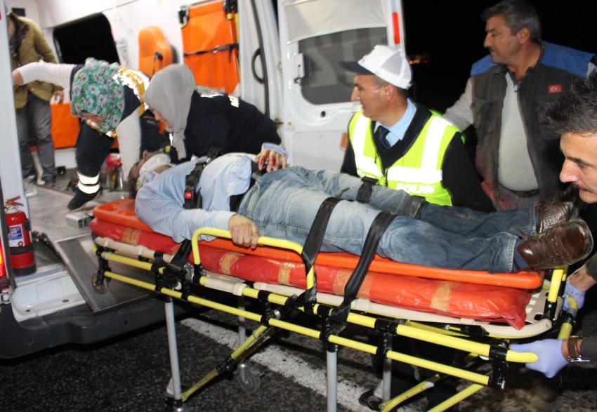 Yola atlayan domuz faciaya sebep oldu! 3 ölü 2 yaralı