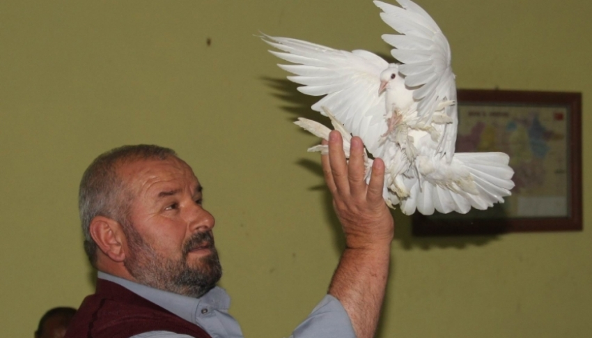 Emekli maaşına kuş