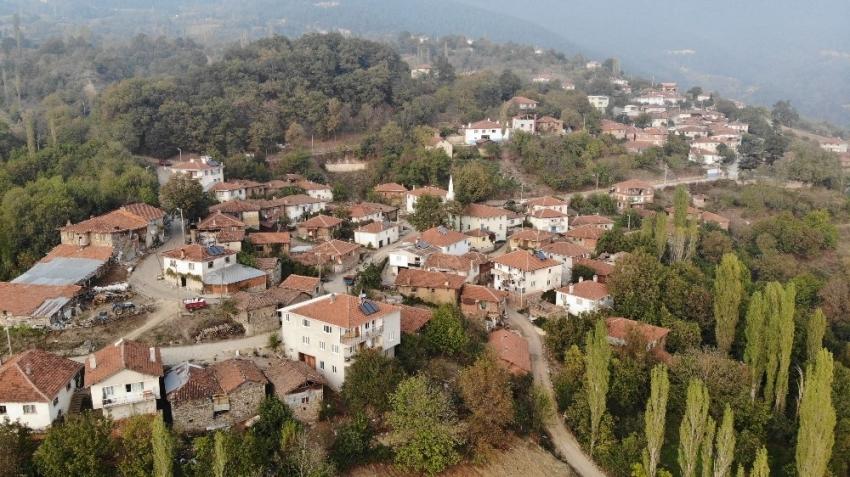 Korona virüs bu köye uğramadı