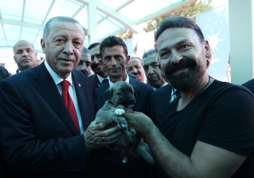 Cumhurbaşkanı Erdoğan'a Kangal yavrusu hediye edildi