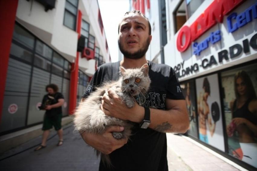 Bursa'da anne kedi ve yavruları son anda kurtarıldı
