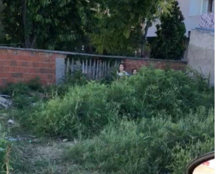 Bursa'da çocuklar polisi görünce yeşilliklere saklandılar