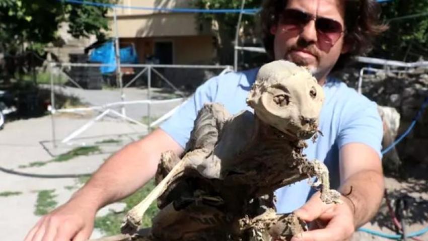 Evinin bodrumunda odun ararken tahtaya yapışmış iskelet buldu