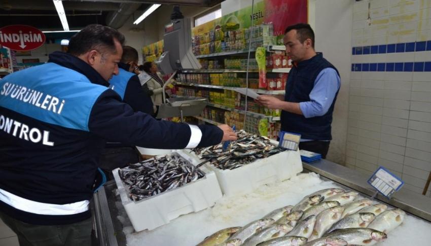 Balık sezonunun açılmasıyla birlikte denetimler başladı