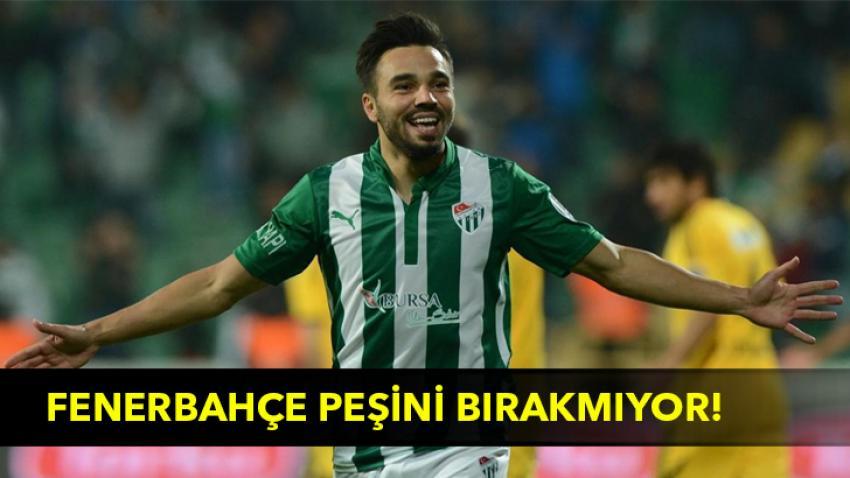 Fenerbahçe peşini bırakmıyor!
