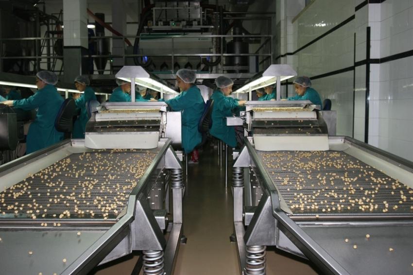 Fındık ihracatı 6 ayda 1 milyar doları geçti