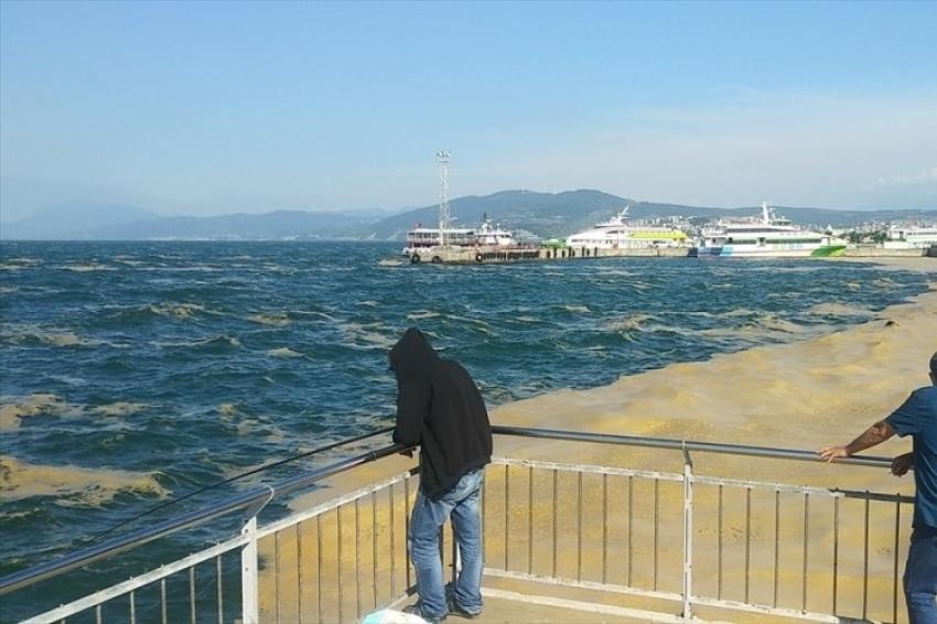 Mudanya kıyılarında çalışmalar sürüyor