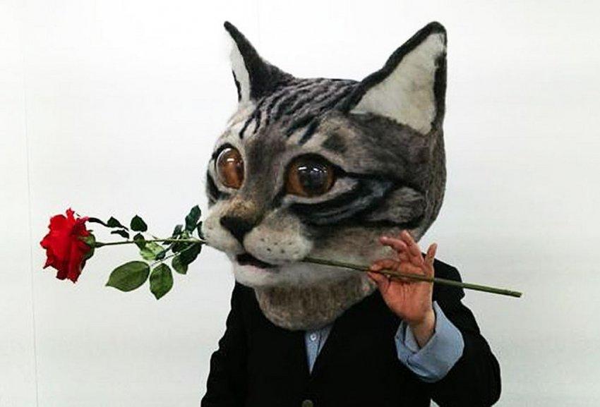 Gençlerin yeni çılgınlığı 'Kedi kafası'