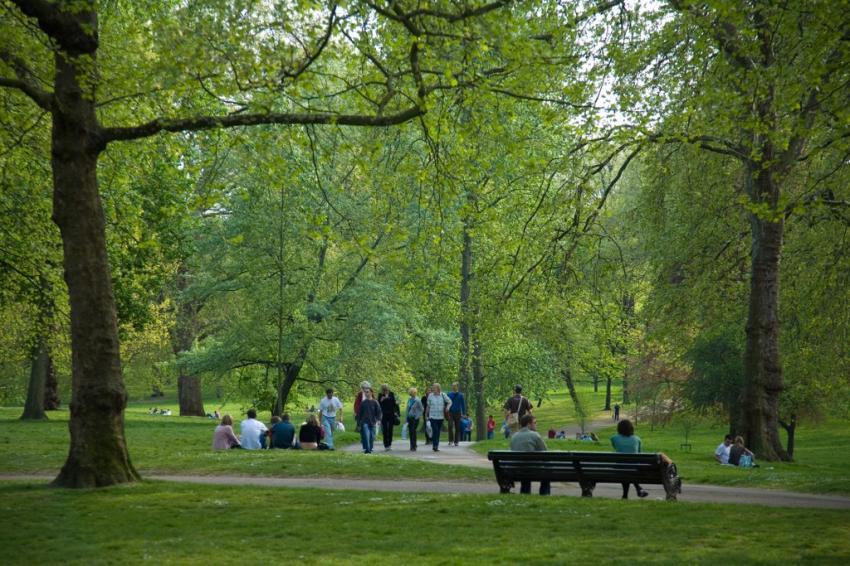 Bursa'da parkta otururken başına bakın ne geldi?