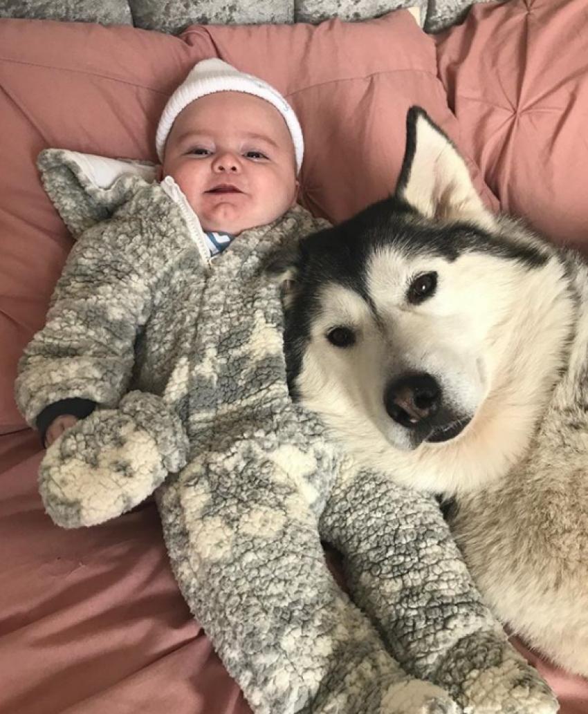 Çocuklarını köpekleriyle büyütüyor