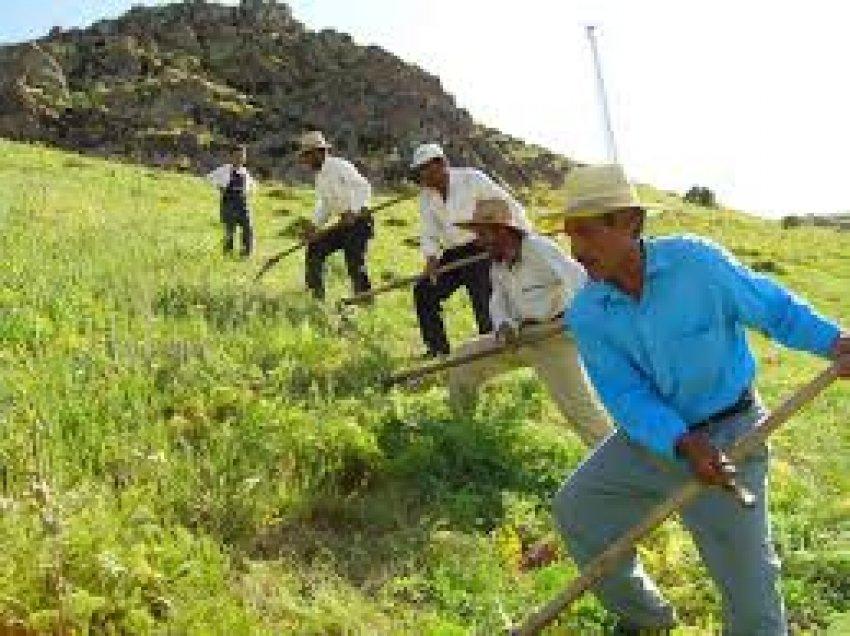 Çiftçi borç ve faiz kıskacında