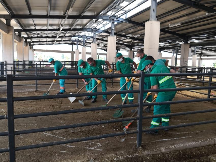 Osmangazi'de kurban temizliği