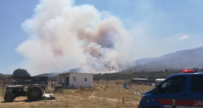 İzmir'de tehlikeli orman yangını!