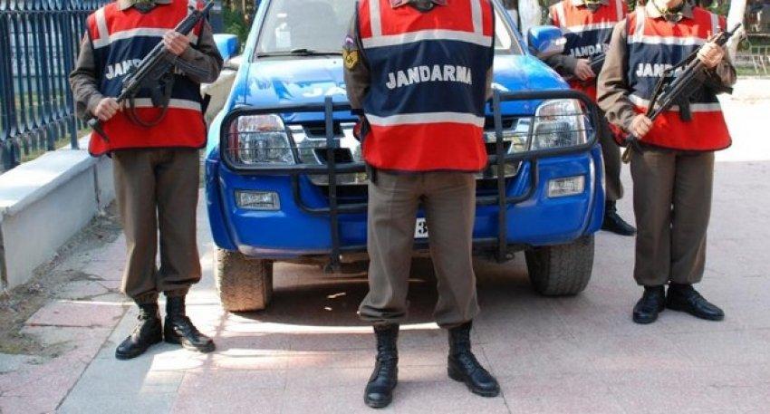 Jandarma 3 mayını imha etti