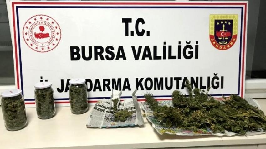 Bursa jandarmadan uyuşturucu operasyonu