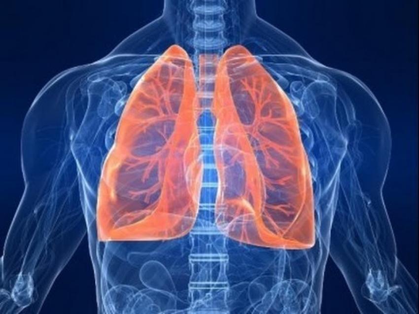 Kalp ve akciğer hastalıklarına egzersizli rehabilitasyon