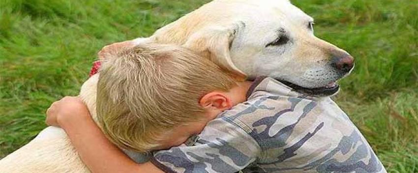Köpekler neden dost canlısı?