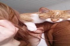 Makyaj yapan sahibinin omzunda uyuklayan sevimli kedi