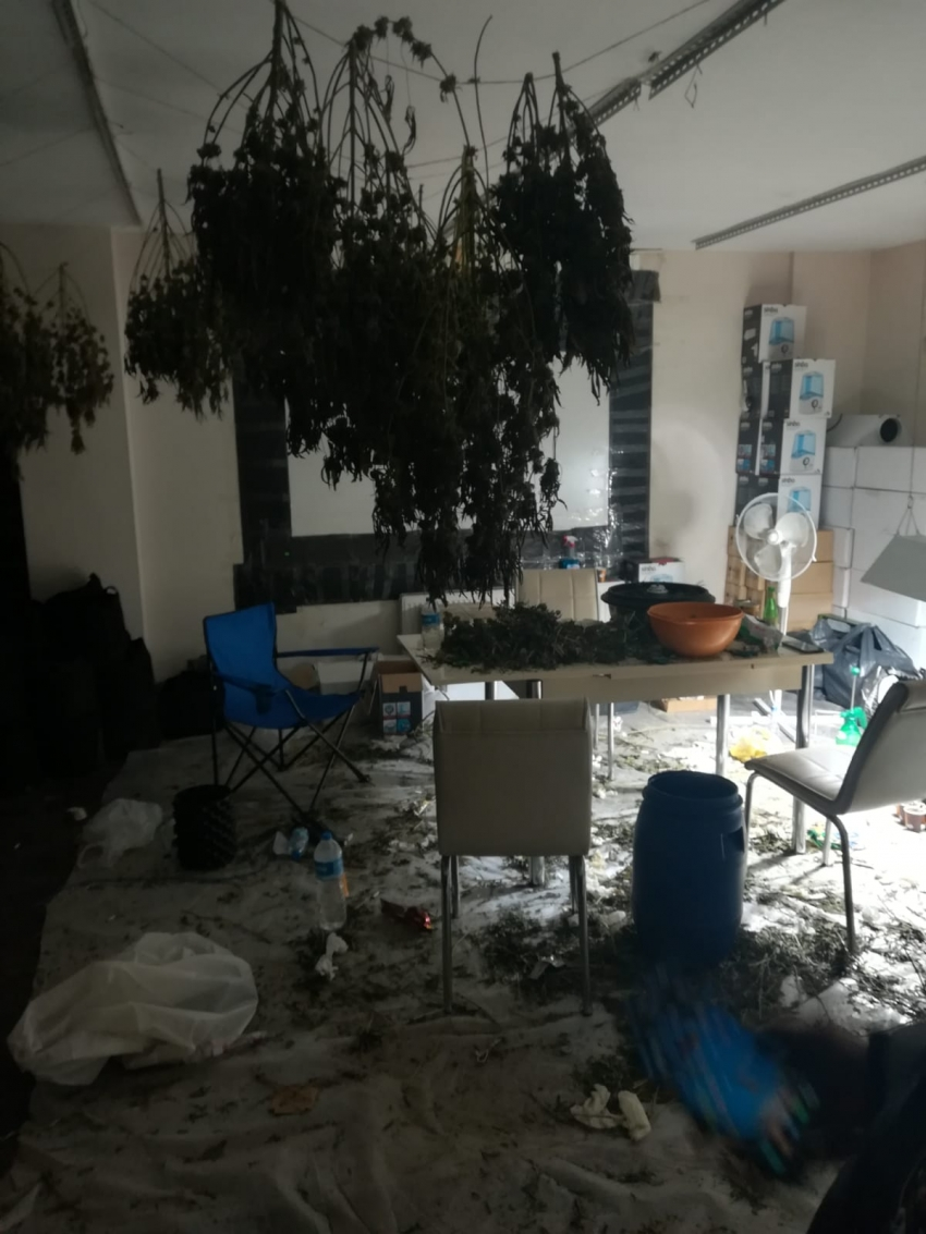 Hırsızlık için girdikleri ev uyuşturucu üretim merkezi çıktı